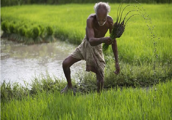 మోదీజీ ఐదేళ్ల పాలనలో 'రైతు'ల 'వ్యధ'